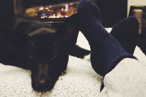 warm socks and dog in front of a fireplace